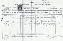 Simon Pimsner birth record